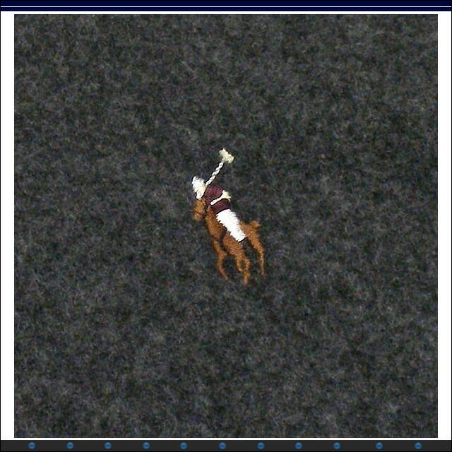 ポロ・ラルフローレン スモールポニーマフラー 6F0200 D.GY 012