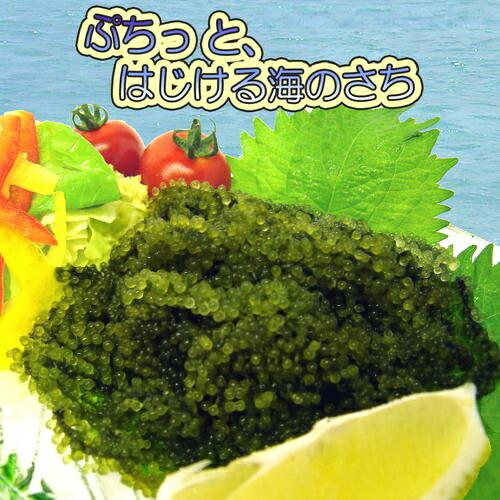 【3袋セット】沖縄県産 海ぶどう 150g (50g×3袋)