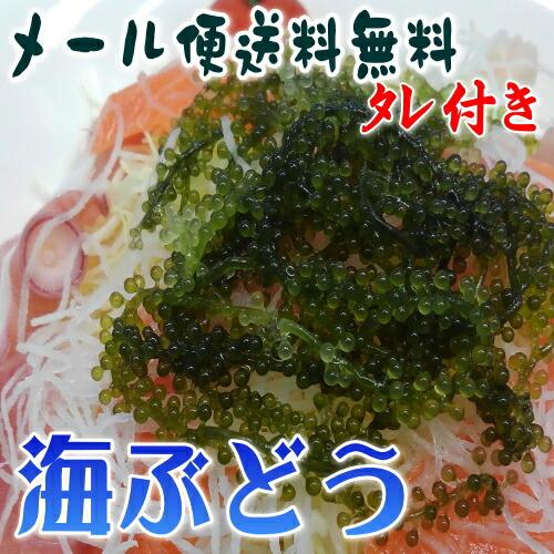 【海ぶどう】
