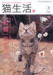 猫生活 1月号 表紙