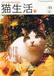 猫生活 10月号 表紙