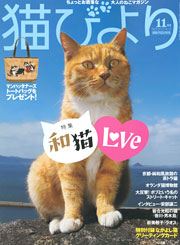 猫びより 11月号 表紙