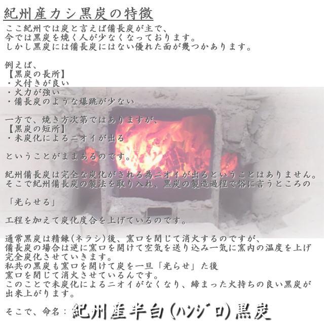 紀州産ハンジロカシ黒炭