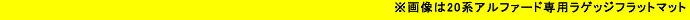 Levolva<レヴォルヴァ>20系(GGH20W/ANH20W/GGH25W/ANH25W)アルファード/ヴェルファイア専用ラゲッジフラットマット / LVLG-1 製品画像
