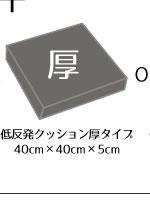 リーネクッションカバー+5cm厚ウレタンシートクッションセット