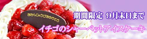 暑い夏のお祝いには、ひんやり冷たいアイスケーキで決まり!