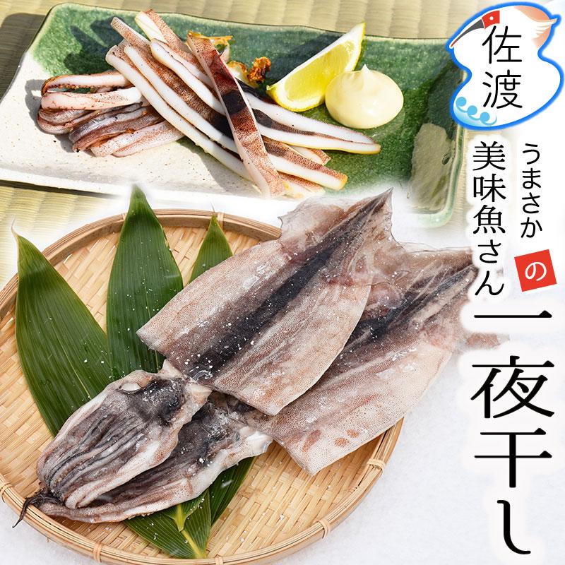 美味魚一夜干し