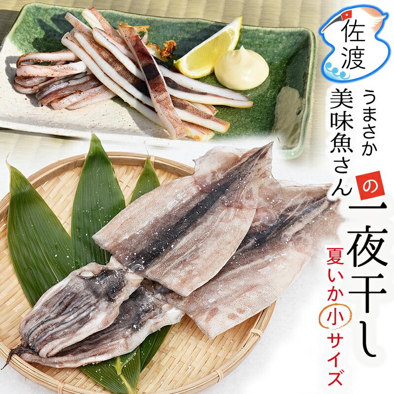 美味魚一夜干し小サイズ