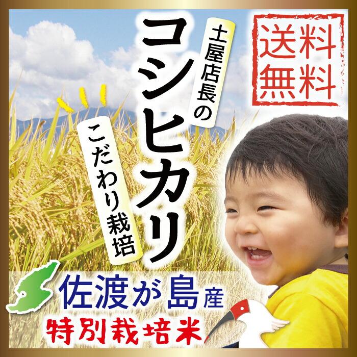 佐渡産コシヒカリ 大野