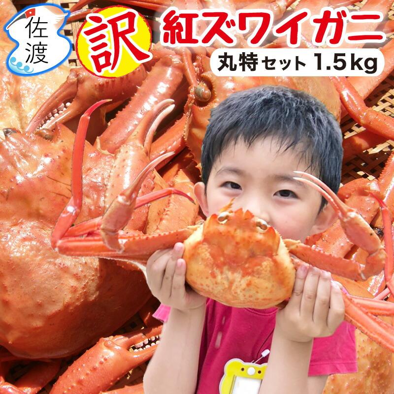 紅ズワイガニ_丸特セット