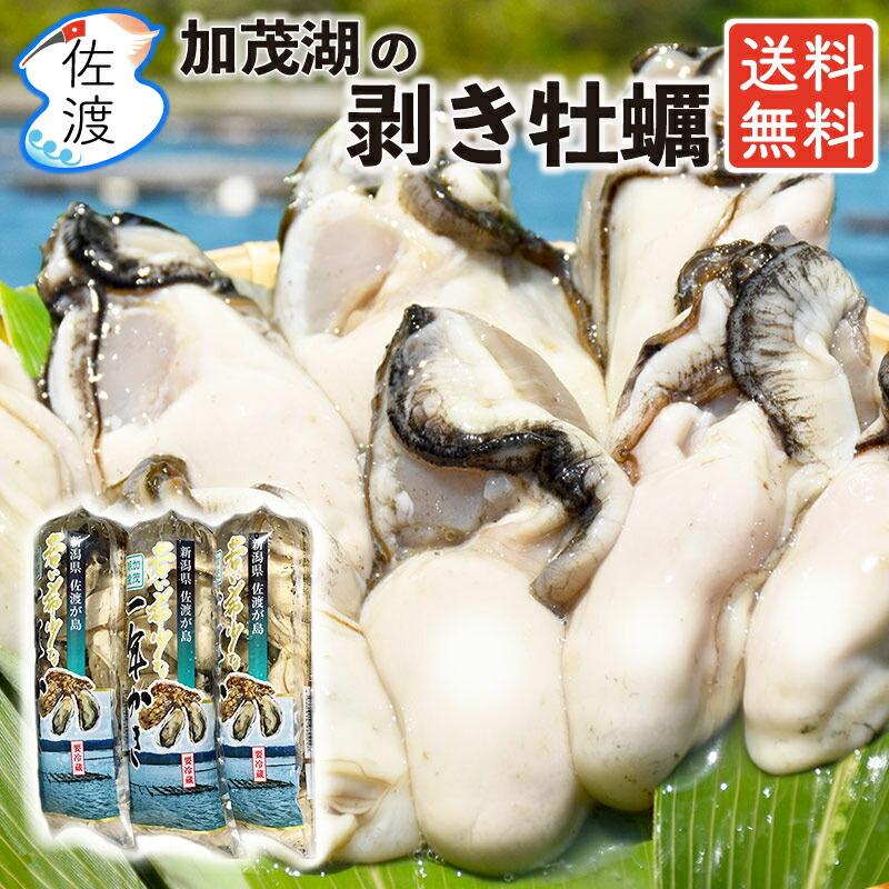 佐渡産 剥き牡蠣450g 送料無料