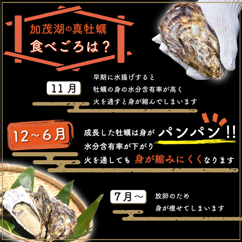 牡蠣の食べごろ