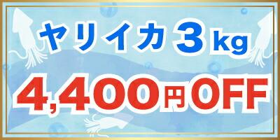 クーポン券4400円OFF