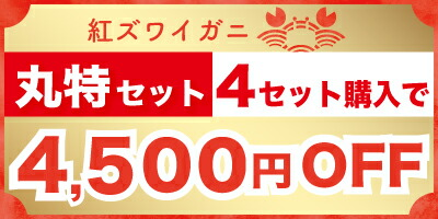 丸特4セット4500円OFF