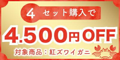 4500円OFF