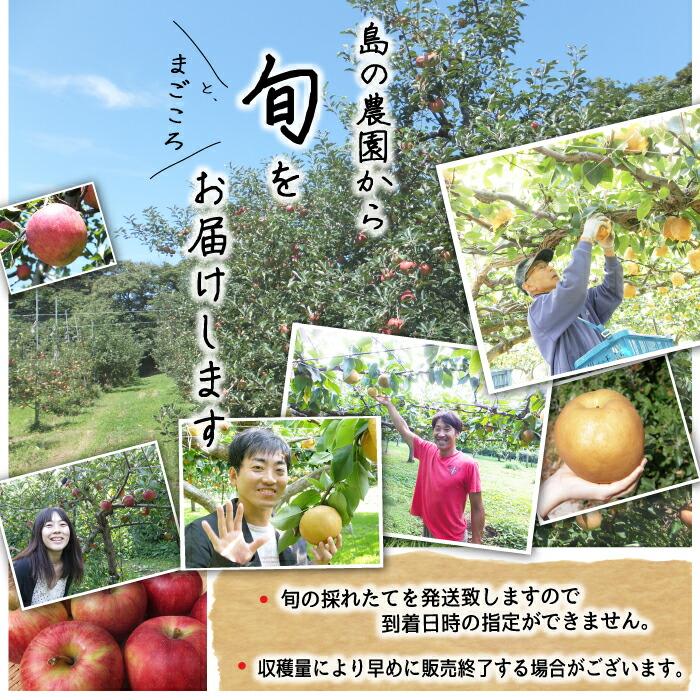島の農園から旬の果物をお届けします