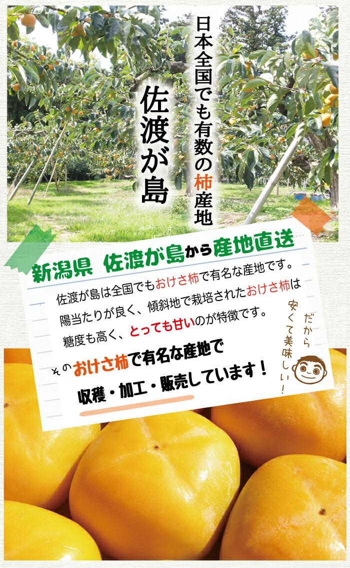 有数の柿産地