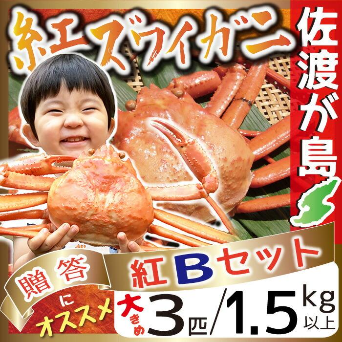 佐渡産紅ズワイガニ 紅Bセット