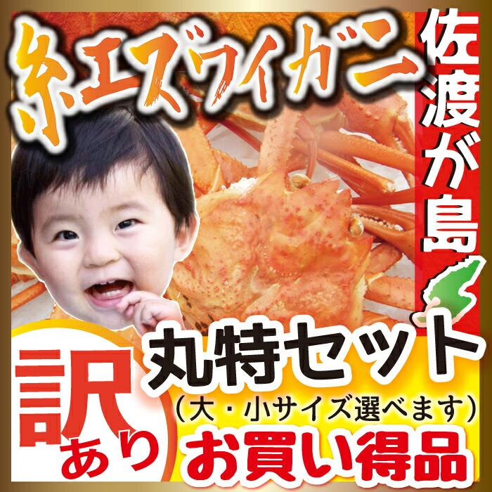 佐渡産 紅ズワイガニ 丸特セット