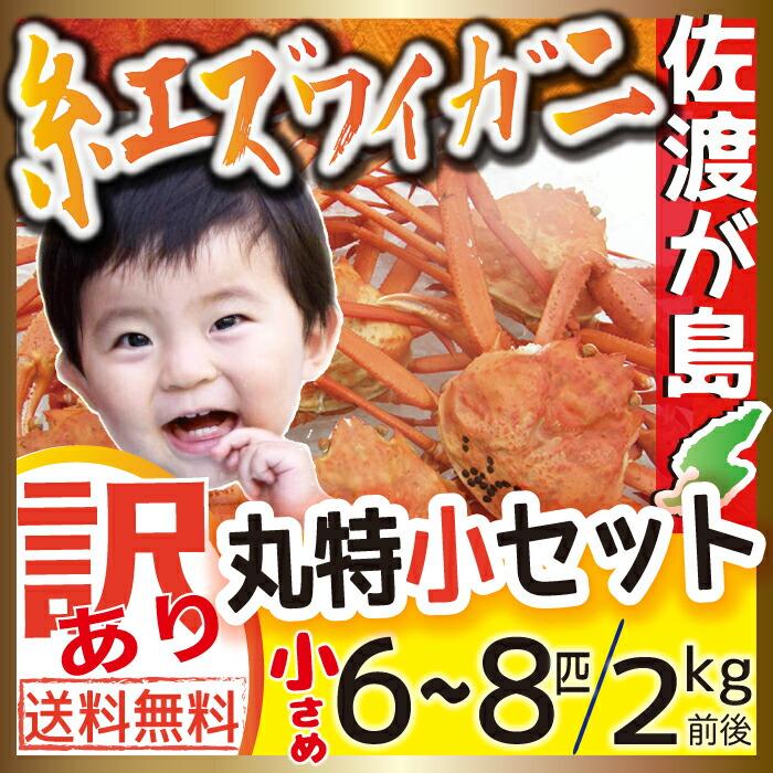 佐渡産紅ズワイガニ 丸特小セット