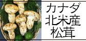 カナダ産松茸