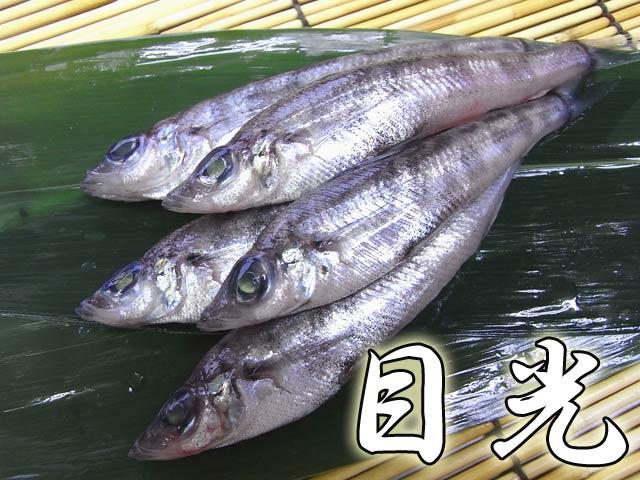 目光はこんな魚
