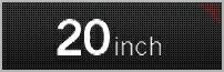 20インチ