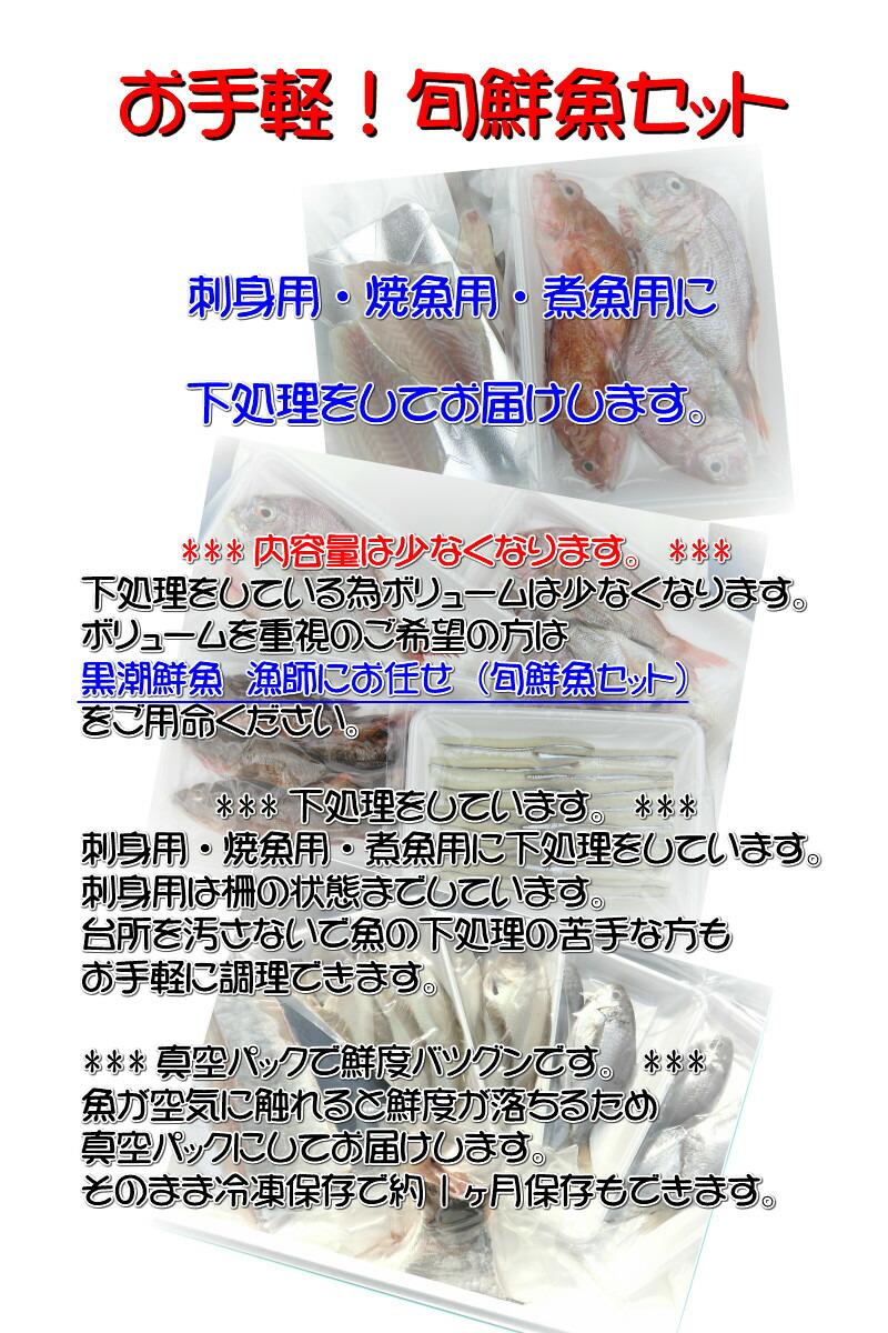 愛媛産 『 漁師におまかせ!お手軽鮮魚セット 』【送料無料】