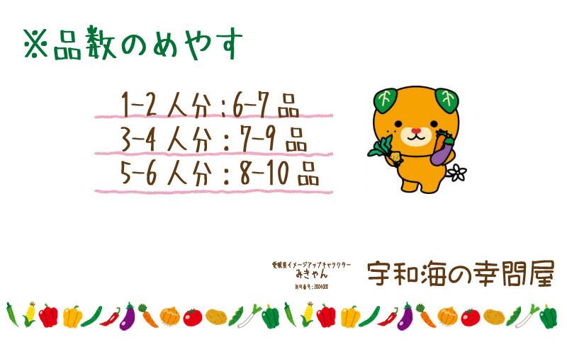 愛媛石鎚山水系 百姓にお任せ! 『 朝採れ旬野菜 』 【送料無料】