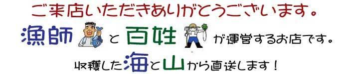 宇和海の幸問屋は愛媛県を中心に、厳選した新鮮な魚介類と愛媛自慢のみかんや加工品をその場ですぐにお届けします!