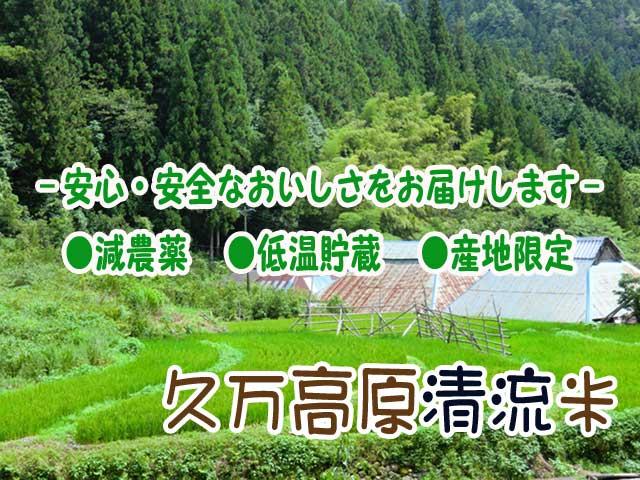 愛媛石鎚山麓久万高原清流米【メール便/送料無料】 白米・玄米対応!