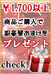 1,700円以上で超豪華プレゼント