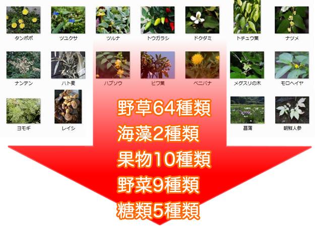 野草64種類、海藻2種類、果実10種類、野菜9種類、糖類5種類の合計90種類!