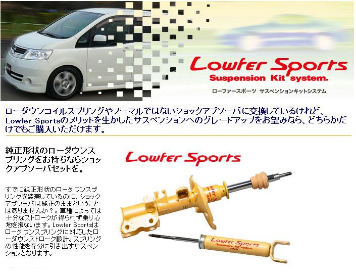 lowfer_2.jpg