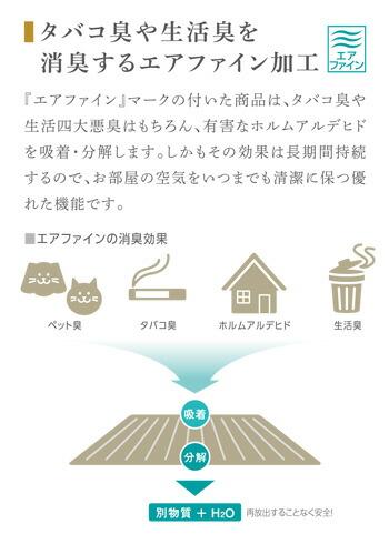 タバコ臭や生活臭を消臭するエアファイン加工