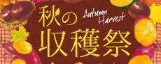 2019 秋の収穫祭フェア
