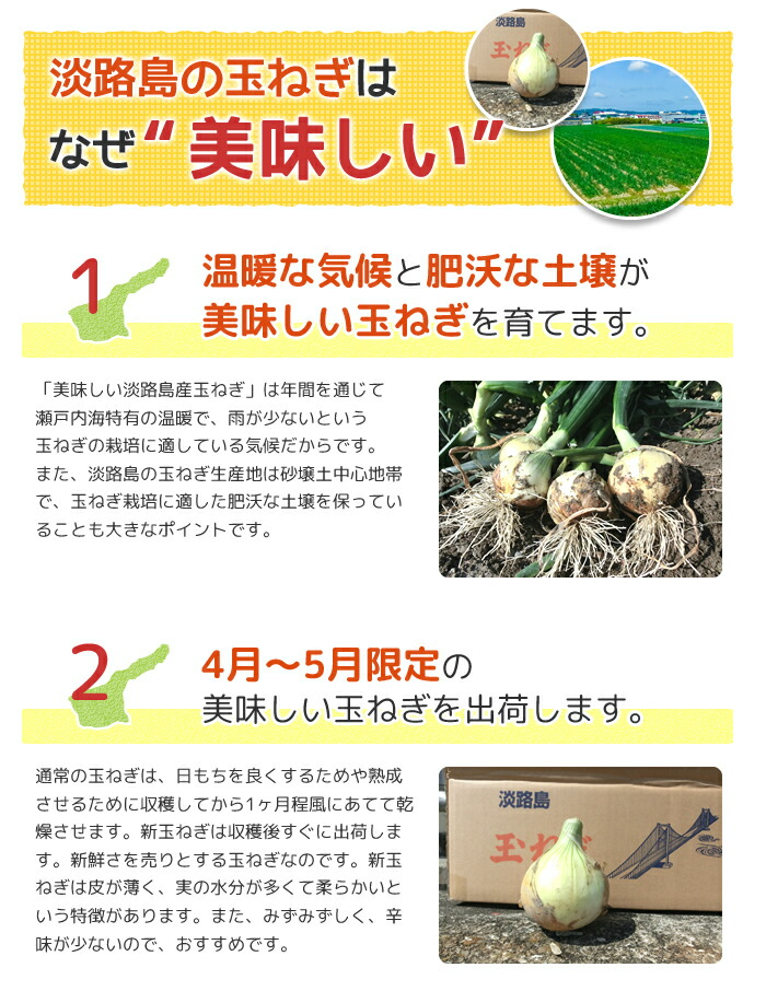 淡路島の玉ねぎはなぜ美味しい