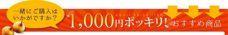 1,000円ポッキリおすすめ商品