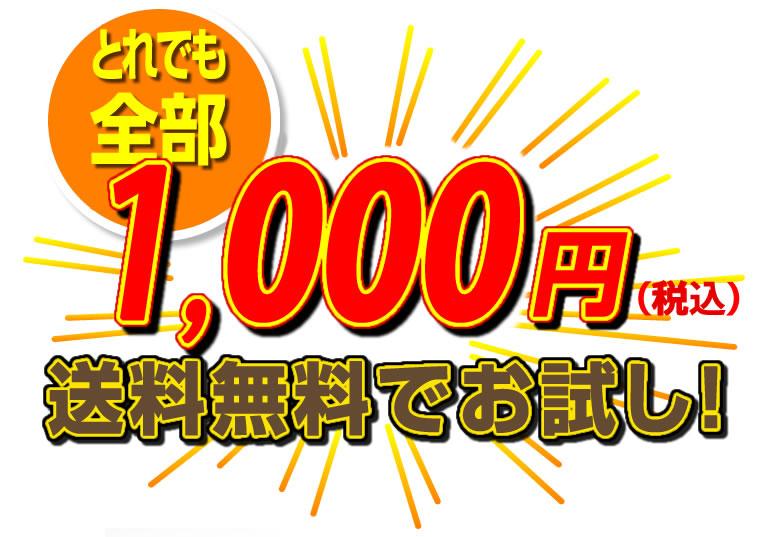 どれでも1000円(税込)で送料無料!是非お試しください!!
