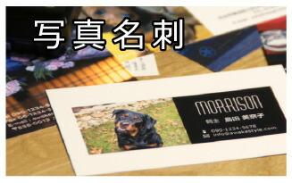 名刺印刷 写真 プリント スピード納期 即納 画像入稿 イラスト ロゴ