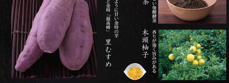 木頭柚子 阿波晩茶
