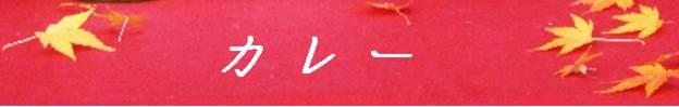 【京都カレーシリーズ】