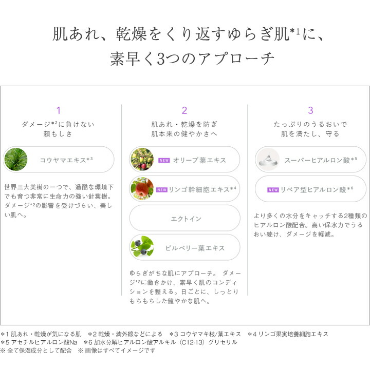 アプローチ コウヤマエキス オリーブ葉エキス リンゴ幹細胞エキス エクトイン ビルベリー葉エキス スーパーヒアルロン酸 リペア型ヒアルロン酸