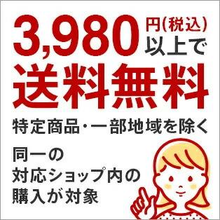 3,980円で送料無料!