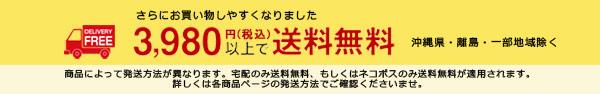 3980円 送料無料 送料込み 対象店舗 39ショップ