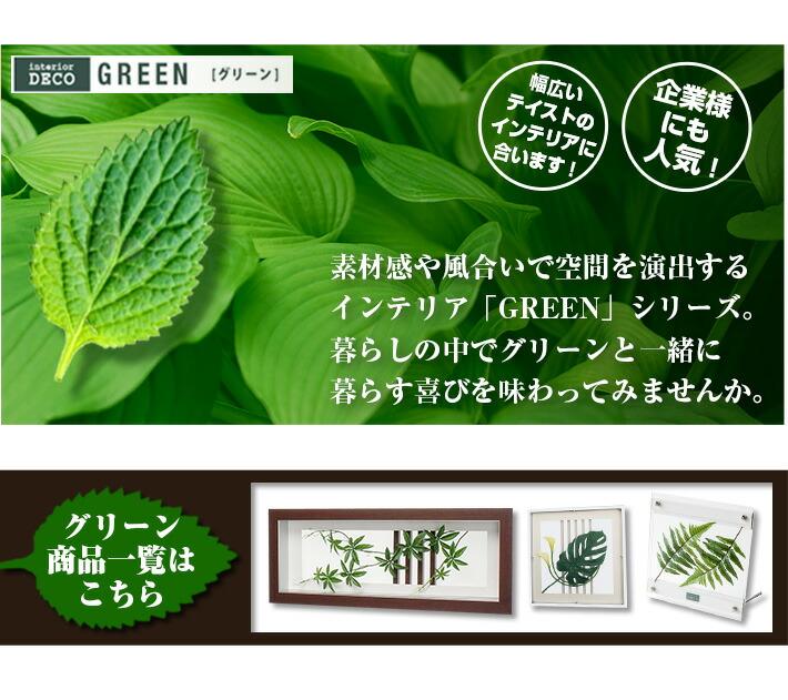 グリーン02