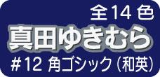 #12 角ゴシック(和英)
