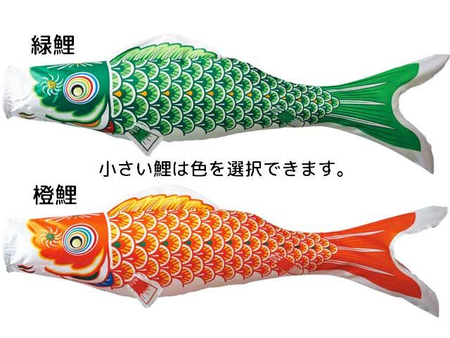 緑鯉、橙鯉