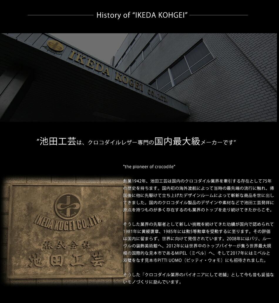 池田工芸 クロコダイルブリーフバッグ