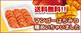 種ぬきマンゴー